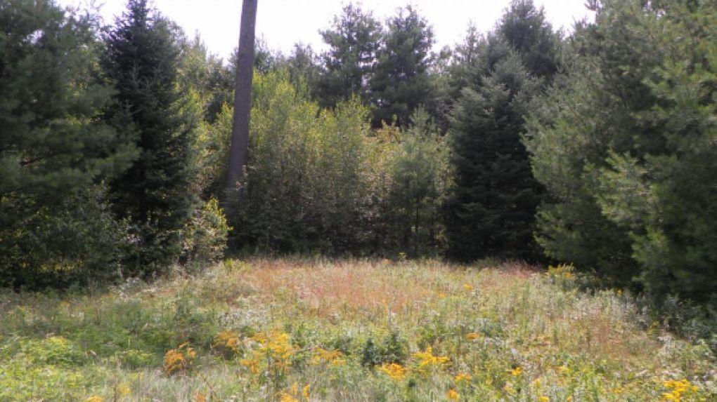 55 Wintergreen Ln, Franconia, NH 03580