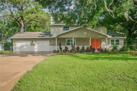 P O Of 12805 Horseshoe Rd Tampa Fl 33626 House For Sale