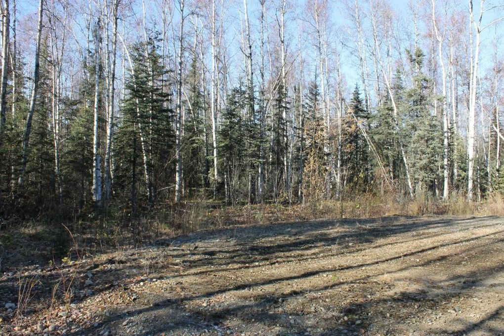 14780 E Gold Miners Way, Willow, AK 99688