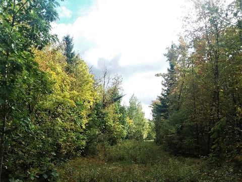 Photo of On Old 10 Rd, Saxon, WI 54449