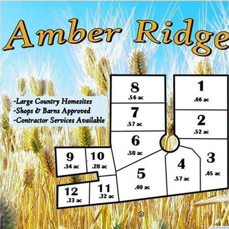 106 Amber Ridge Rd Lot 6 Palouse, WA 99161