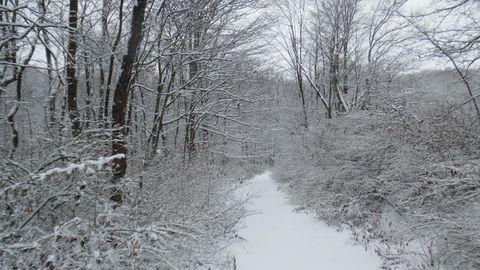 Photo of Granville Rd, Brockway, PA 15824