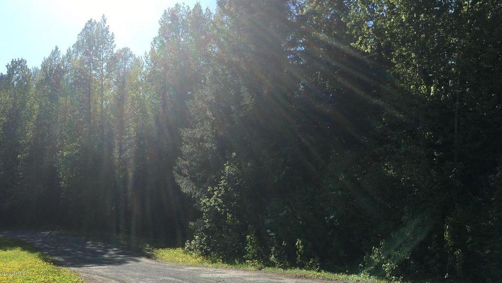L10 White Beaver Way, Haines, AK 99827