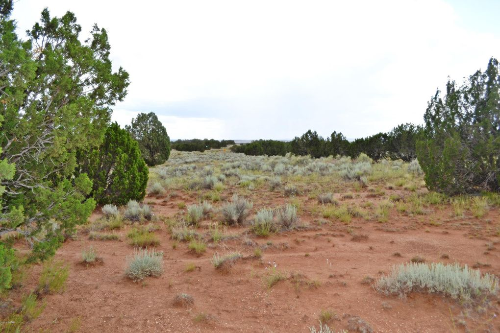 3734 Bum Heel Ranch Rd Lot B Snowflake, AZ 85937