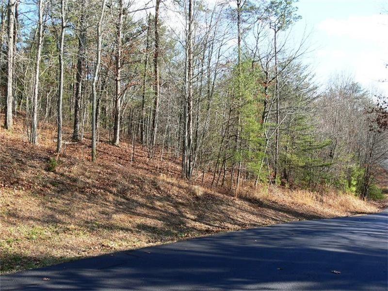 E Hidden Valley Lakes Dr, Mccaysville, GA 30555 - realtor com®