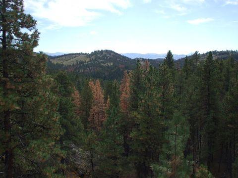 Photo of Lookout Ln, Cascade, MT 59421