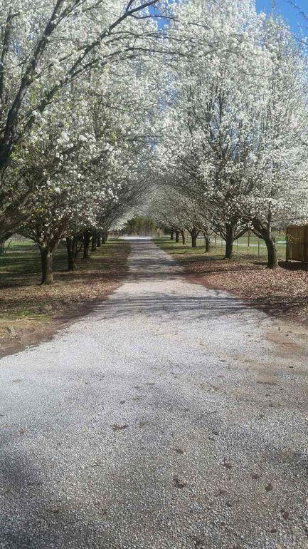 1086 Beech Bottom Rd, Watertown, TN 37184
