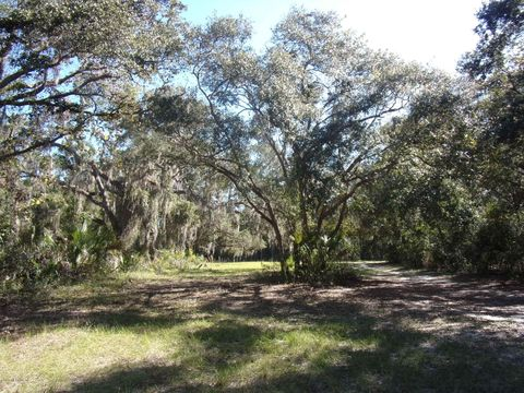 Photo of 150 Rose Walk Ln, Georgetown, FL 32139