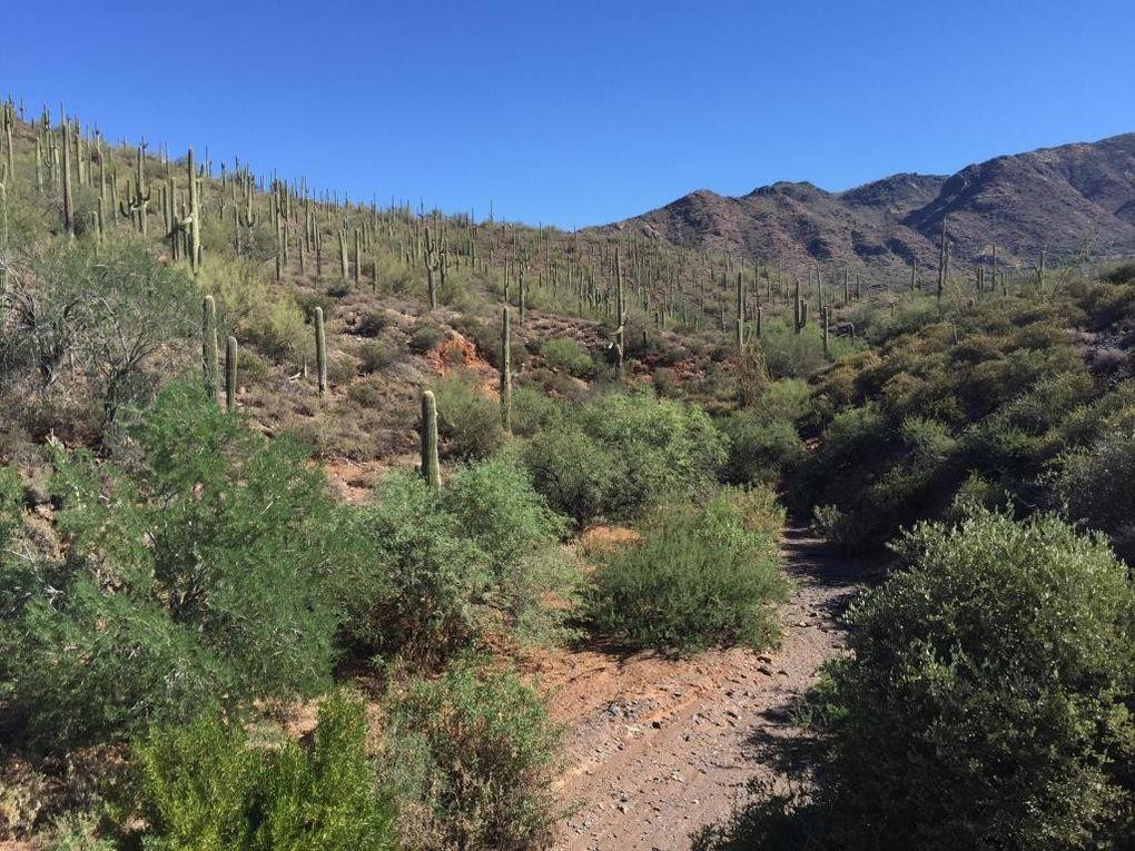 Arizona Property Records Free