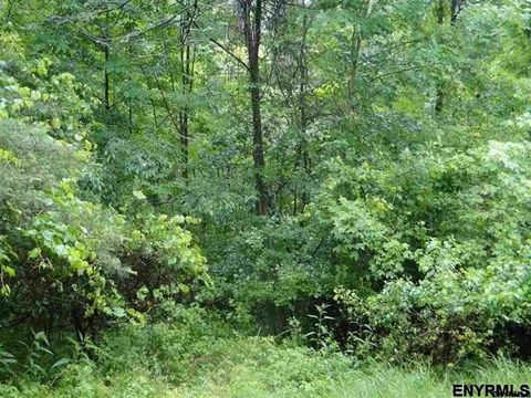 Photo of Stanton Rd Lot 1, Coeymans Hollow, NY 12046