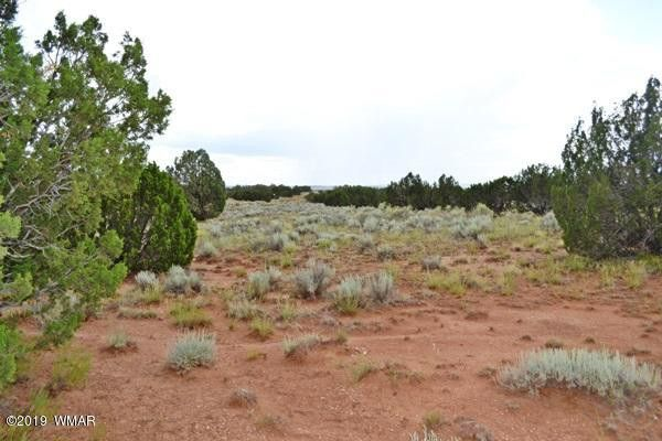 3734 Bum Heel Ranch Rd Lot A Snowflake, AZ 85937