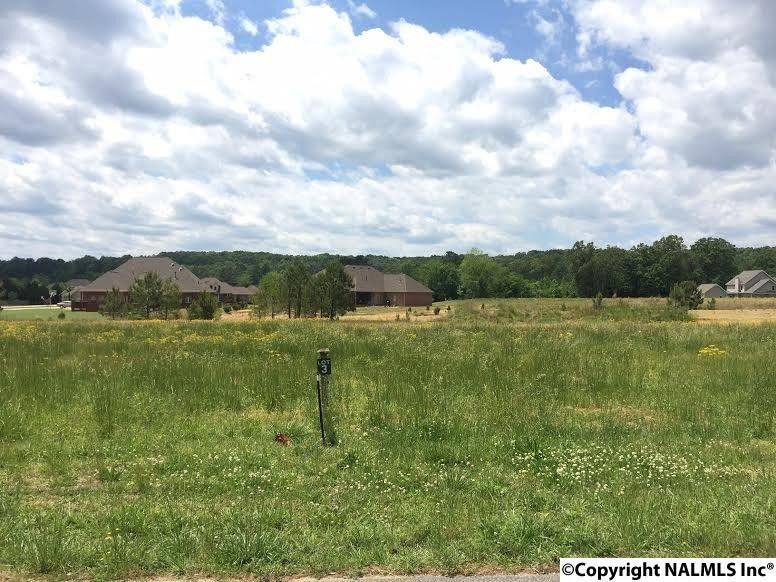 3429 S Chapel Hill Rd Lot 3, Decatur, AL 35603