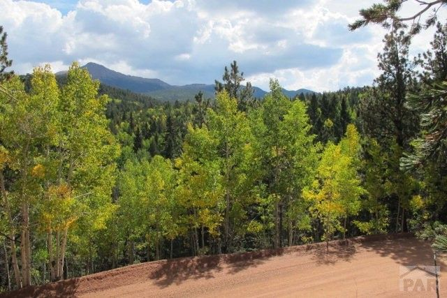 1301 calcite dr divide co 80814 land for sale and real