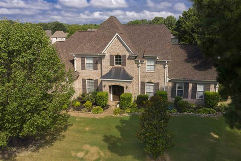 Fabulous Lakeland Tn Houses For Sale With Swimming Pool Realtor Com Download Free Architecture Designs Viewormadebymaigaardcom