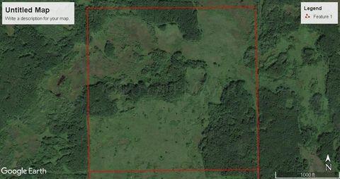 000 Ne1/4, Lancaster, MN 56735