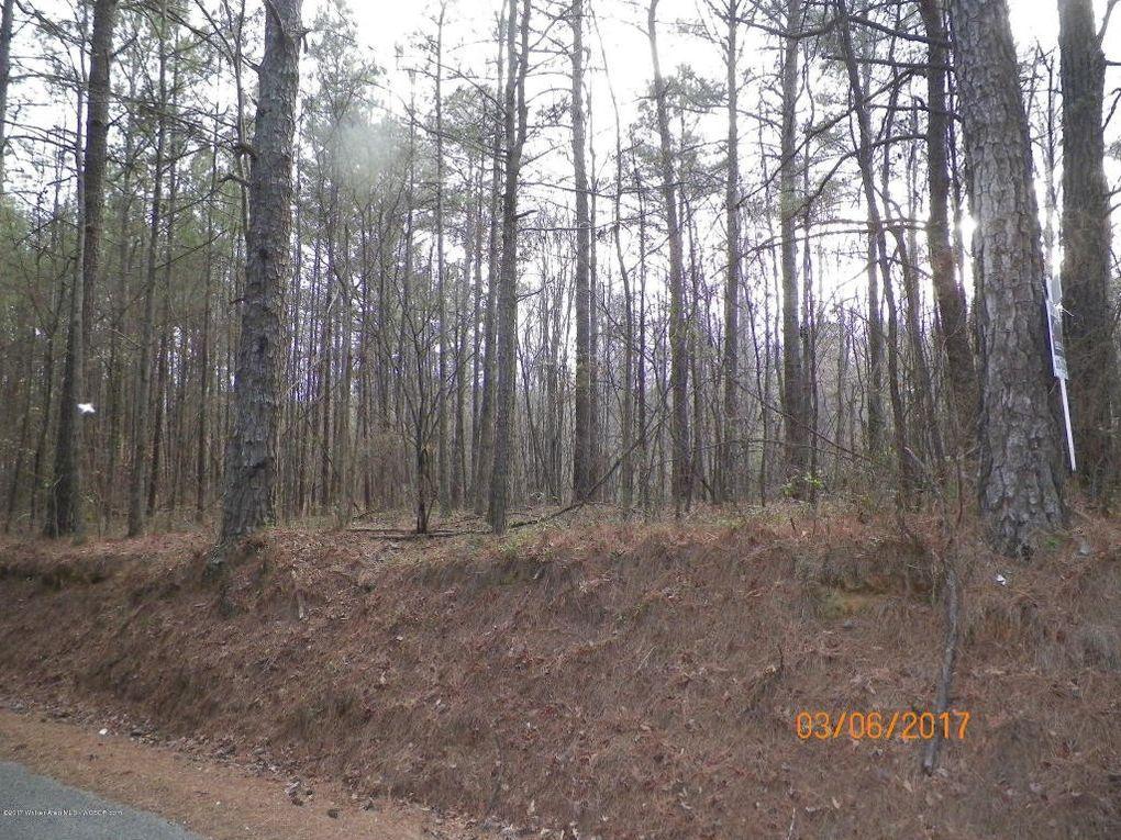 County Road 351, Crane Hill, AL 35053