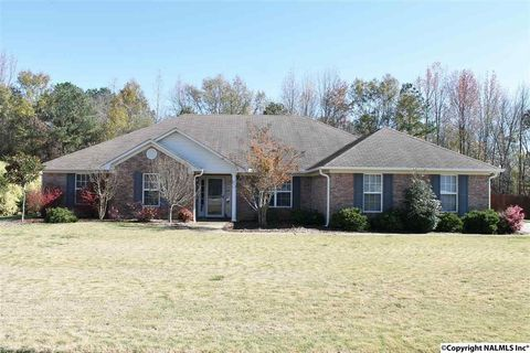109 Autumn Pointe Dr, Madison, AL 35757