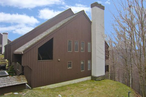 145 Blueberry Ledge Ridge Rd Unit 49, Plymouth, VT 05056