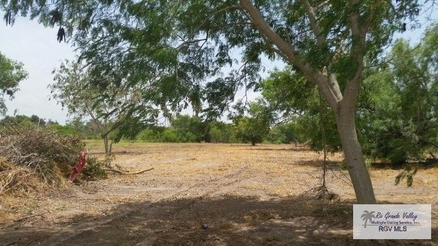 Cameron County Tx Property Search