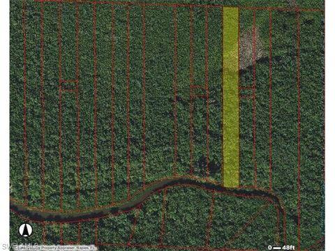 everglades fl land for sale real estate