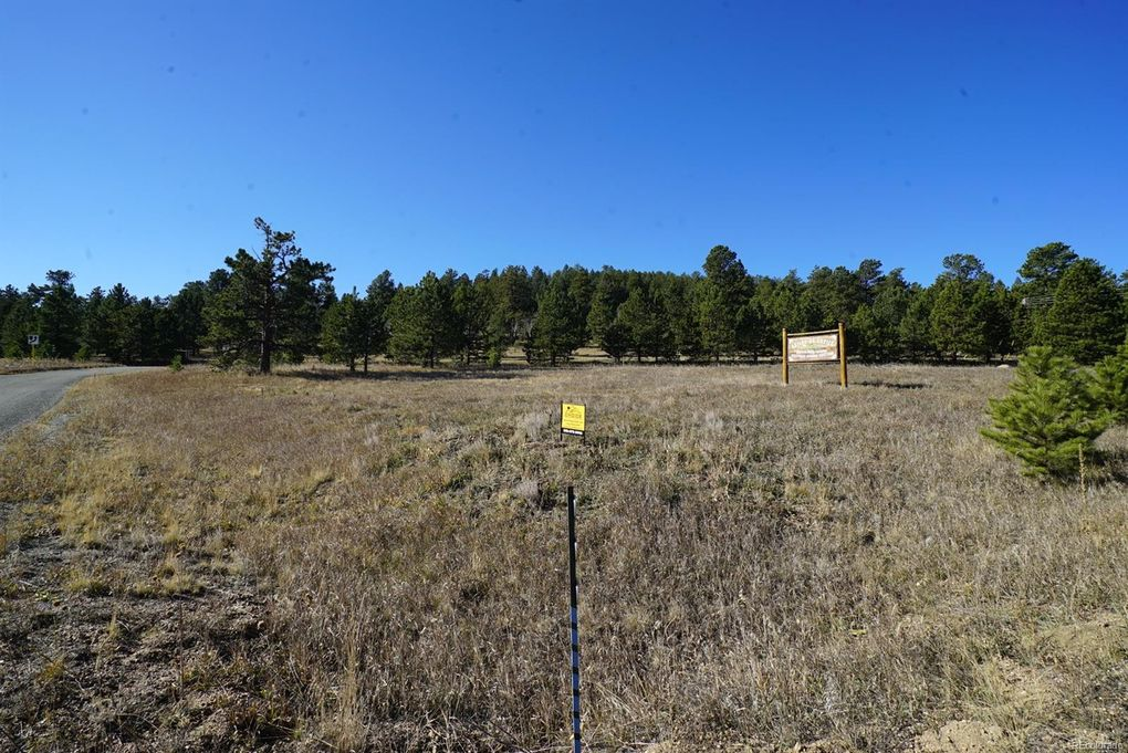 483 County Road 43 # A, Bailey, CO 80421