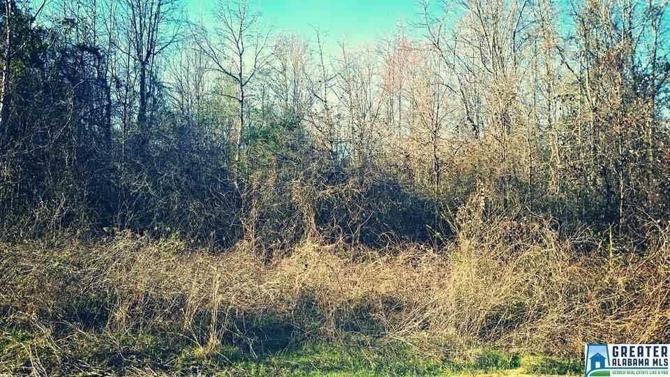County 340 Rd Lot 23, Maplesville, AL 36750