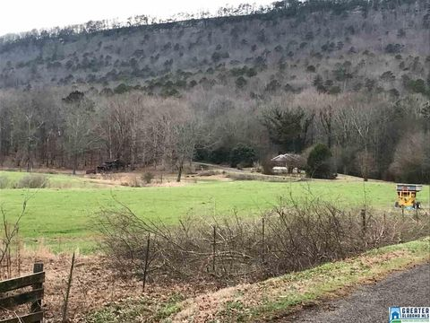 Photo of Valley Dr, Steele, AL 35987