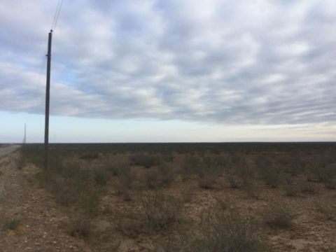 County Road 221, Toyah, TX 79785