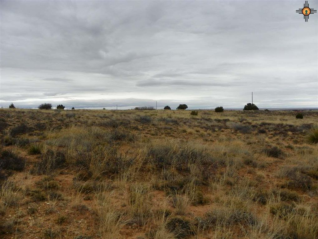 River Ranches Rd, Fort Sumner, NM 88119