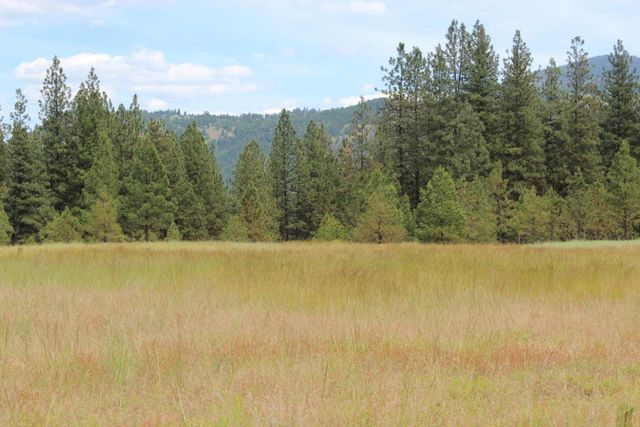 Kettle Falls Washington ~ Tipton rd kettle falls wa realtor