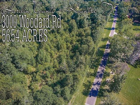 3000 Woodard Rd, Kountze, TX 77625