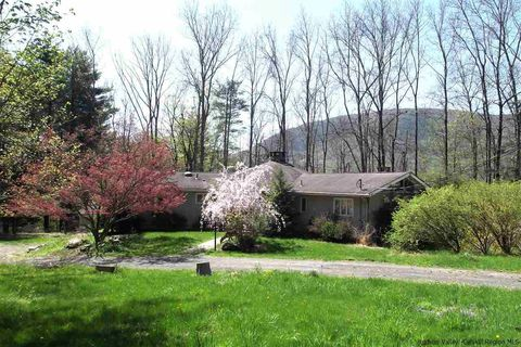 798 Wittenberg Rd, Mount Tremper, NY 12457