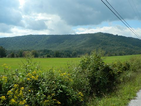Photo of Mill Creek Rd, Sunbright, TN 37872