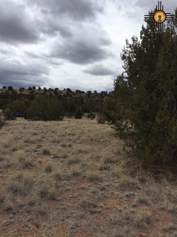 6145 Brushy Mountain Rd, Cliff, NM 88025
