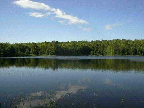 Estes Lake Rd Lot E, Sidnaw, MI 49961