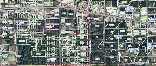 1st Ter Ne, Crystal River, FL 34429