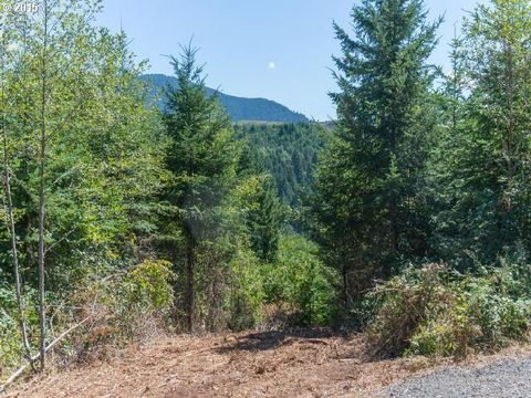 Winberry Crk, Fall Creek, OR 97438