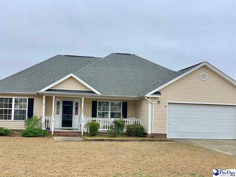 Photo of 425 Pilchard Ct, Florence, SC 29505