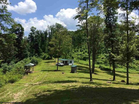 1387 Bruni Mountain Ln, Kerens, WV 26276
