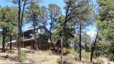 16 Flicker Dr, High Rolls Mountain Park, NM 88325