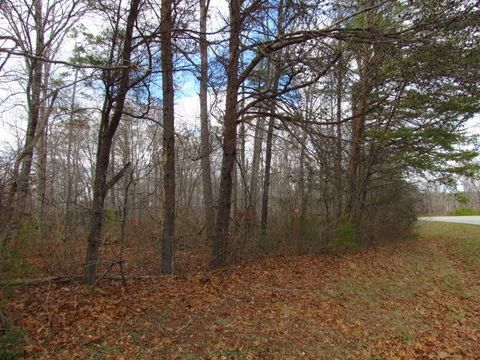 State Route 56, Coalmont, TN 37313