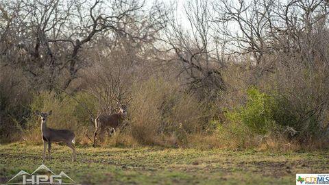 Photo of 770 Fm 2049, Three Rivers, TX 78071