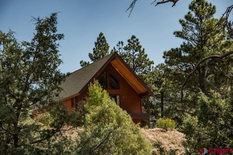 Photo of 4391 County Road 335, Pagosa Springs, CO 81147