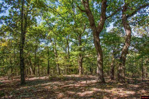 Photo of Pine Holw, Protem, MO 65733