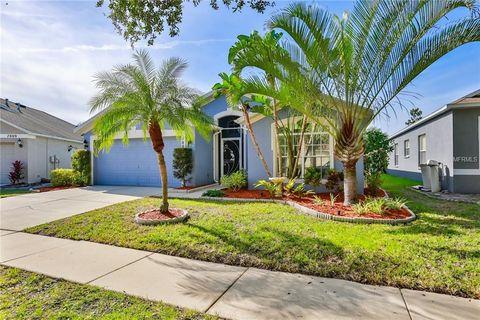 7807 Monarch Garden Cir Apollo Beach Fl 33572 House For