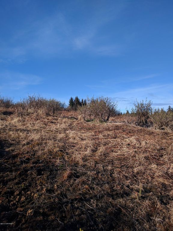 L1 Misty Ridge Rd, Homer, AK 99603