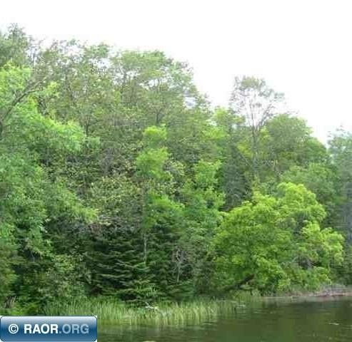 w stingy ln nashwauk mn 55769 land for sale and real estate listing