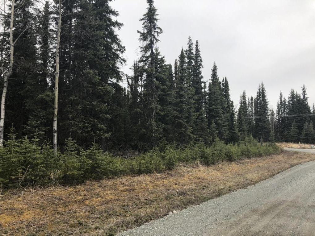 121 Rain Tree Ln, Soldotna, AK 99669