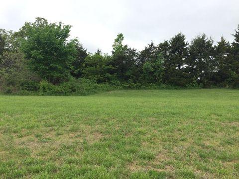 Fair Grove Land for Sale - Fair Grove, MO Land Real Estate ...