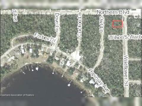 1254 Wildflower St Lake Placid FL Land For Sale and Real